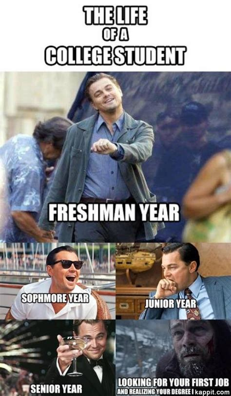 Uni Student Memes - the life of a college student freshman year sophomore year junior year senior year looking for