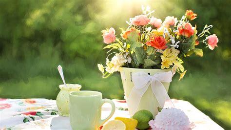 cuisine regime image libre petit déjeuner thé soleil table matin citron gâteau citrons