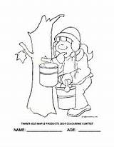 Maple Coloring Syrup Getdrawings Sugaring sketch template