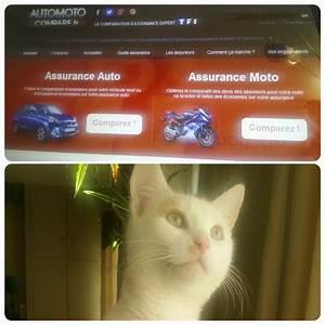 Simulation Assurance Auto Pacifica : assurance auto assurance auto en ligne simulation ~ Medecine-chirurgie-esthetiques.com Avis de Voitures