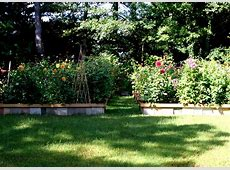 Beautiful Backyard Flower Gardens Funny Wallpapers Hd