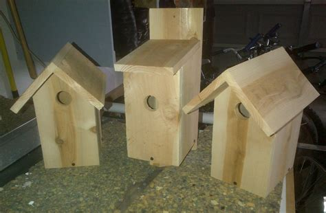 pack woodworking bird houses for sale