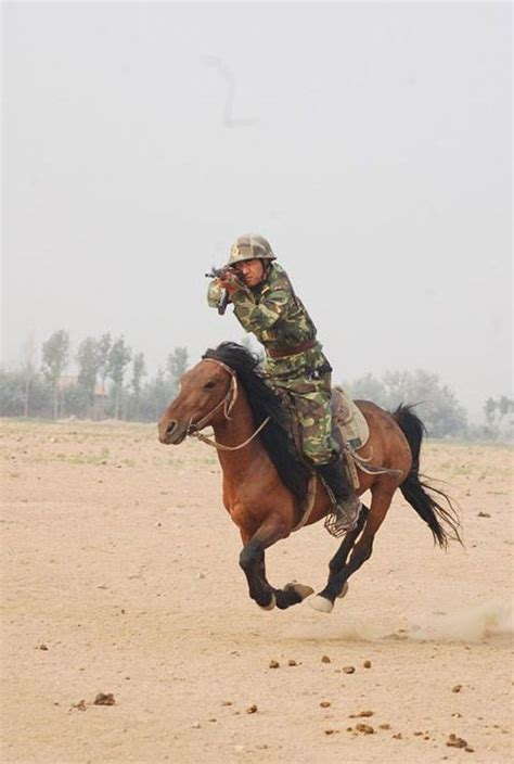 horse military cavalry riding war horses many left special much support history