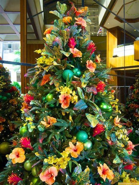 christmas decorations  hawaii