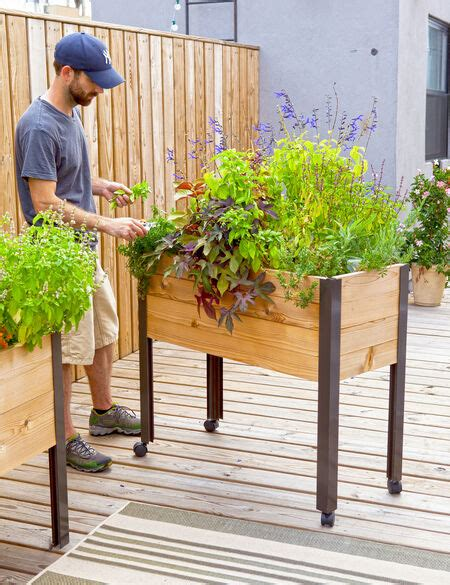 elevated garden beds  legs elevated planter box