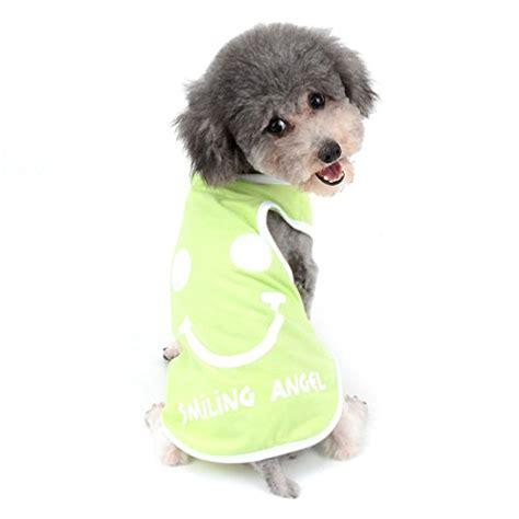 Bekleidung Für Kleine Hunde