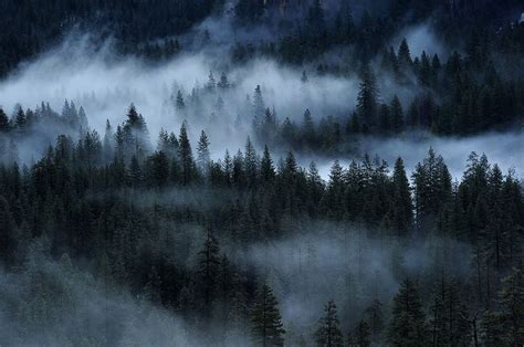 misty hazy foggy  pete piriya  px photo