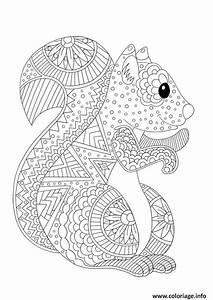 Jeux Anti Stress : coloriage ecureuil adulte animaux antistress dessin ~ Melissatoandfro.com Idées de Décoration
