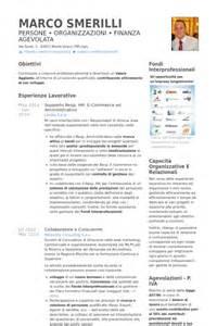 Heure Exemple De Cv Base De Donn Es Des Cv De Visualcv