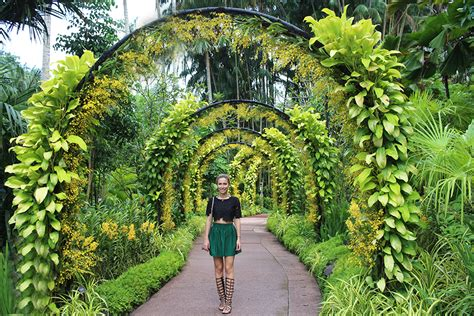 Botanischer Garten Singapur by Stasha Fashion Singapore Botanic Gardens