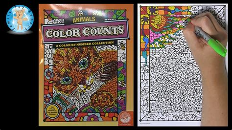 mindware color counts animals color  number coloring