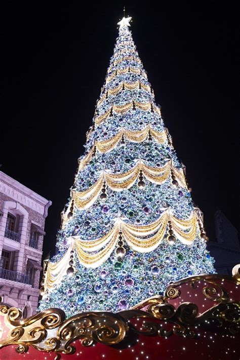 guinness world records official recognition christmas tree