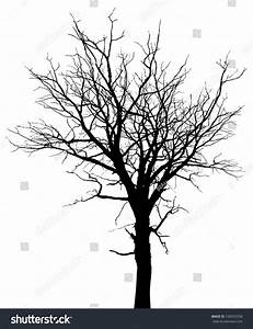 Dead Tree Silhouette. Vector Old Dry Oak Crown Without ...