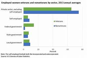 Women veterans in the labor force : Spotlight on ...