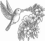 Coloriage Grayscale Gratuit Oiseau Qui Fleurs Chante Coloring Fleur Artherapie Une Dessin Bon Freepik Sans Sur Bird Mignon Centerblog Imprimer sketch template