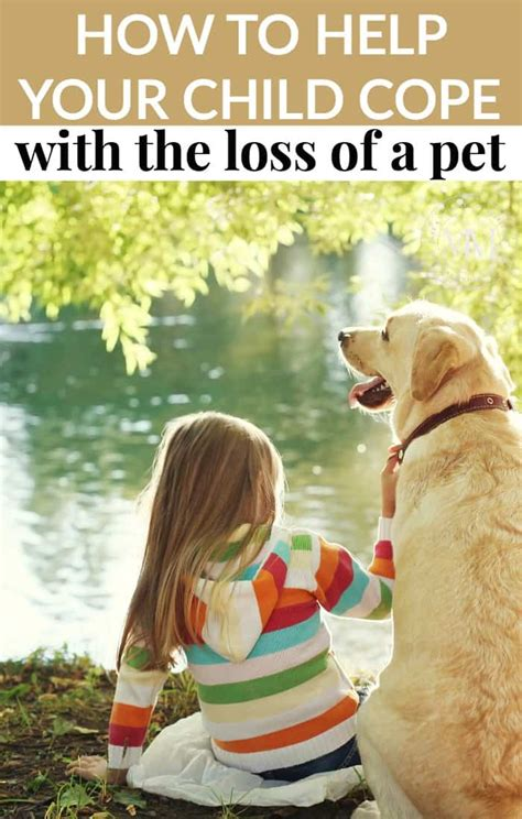 How To Help Your Child Cope With The Loss Of A Pet  Mommy. Photo Developing Offers Email Contact Manager. Business Intelligence For Banks. Secondary Education Schools How To Do Stock. Cash For Junk Cars Orlando United Credit Auto. The Standard Disability Insurance. University In San Jose It Security Conference. Help Me With Depression Telecom Industry News. My Account Management Website