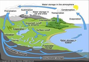 Water Cycle Diagram Detailed