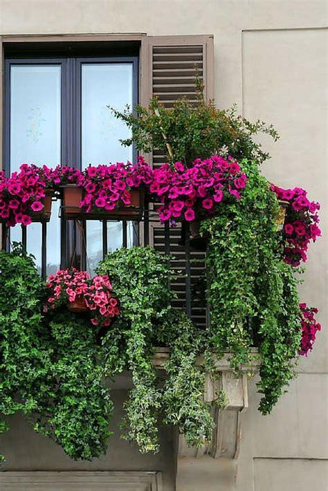 Französischer Garten Pflanzen by Das Ist Ein Balkon Garten Planet Saftig Balkon Ga
