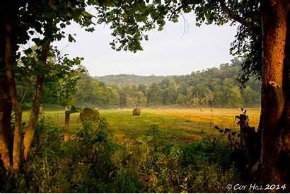 Summer Scenes Farm Country