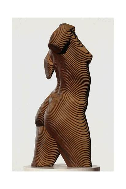 Wood Sculpture Laminated Plywood Modern Zealand Bodyscape