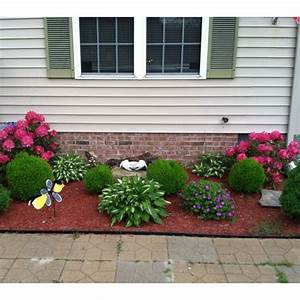 Landscape surprising plants for front of house decor low for Landscaping plant ideas for front of house