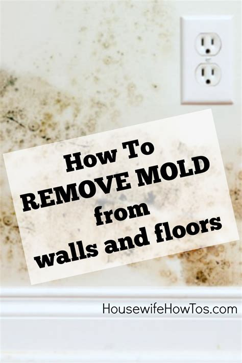 How To Remove Mold From Walls  Housewife HowTo's®