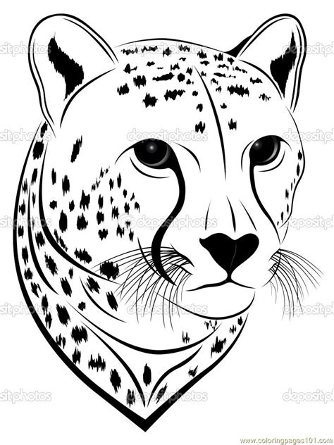 cheetah face coloring page  cheetah coloring pages coloringpagescom