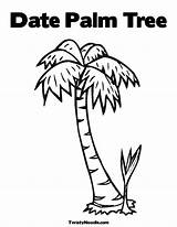 Coloring Tree Palm Chicka Boom Pages Twistynoodle Bark Trees Template Printable Crafts Personalized Date Sheet Outline Craft sketch template