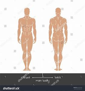 Healthy Young Man Front Back View Stock Vector 407795182 ...