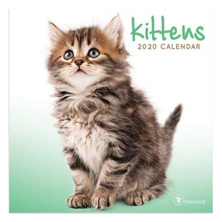 kittens mini calendar walmartcom