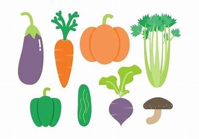 Vegetables Vector Vegetable Container Gardening Vecteezy Grow