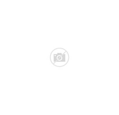Alaska Country Grizzly Tee Sleeve Short Adult
