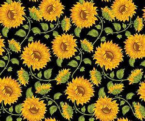 Sunflower Tumblr Backgrounds Images 6 HD Wallpapers ...