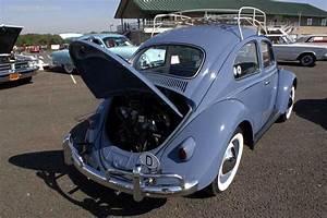 1958 Volkswagen Beetle Image