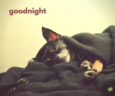 goodnight images  share