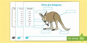 Black And White Parts Of A Kangaroo Labelling Worksheet