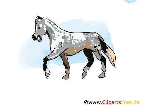 Heste Illustrationer og Clip Art