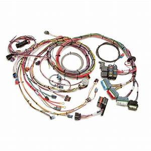 Efi Vortec Harness For 1996-97 Gm V6 Engine