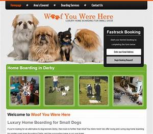 Dog boarding in derby online99 website design derby for Dog boarding website