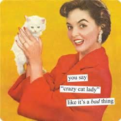 Cat Meme Ladies - the crazy cat lady checklist lisa world