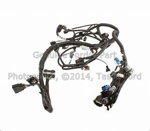 Oem Engine Wiring Harness 2008