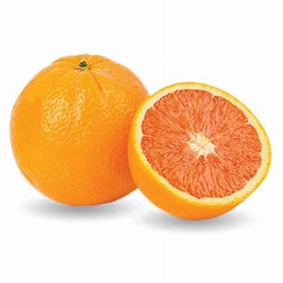 Orange Fresh Chopped Oranges Cat Limes Lemons