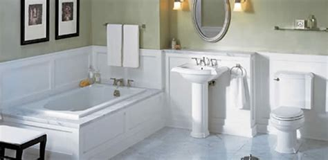 Revive Toilet And Seat