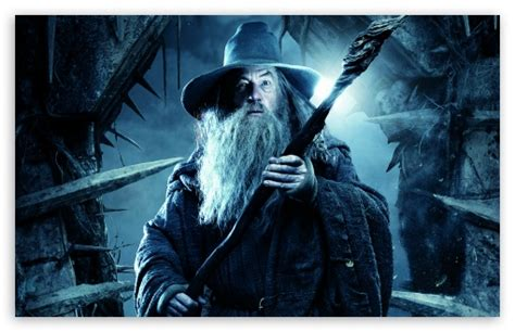 hobbit  desolation  smaug gandalf  grey  hd