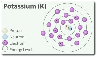 Number Of Protons In Potassium by Atomic Number Potassium