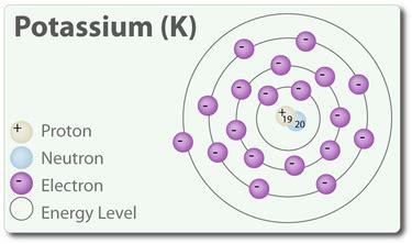 Atomic Number Potassium