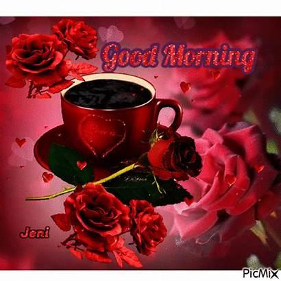 Morning Romantic Rose Picmix
