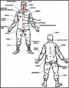 Self Defense Pressure Points Chart Yawara Stick For Women Self Defense Hubpages