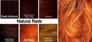 Ginger Hair Color Dye, Best, On Dark Skin,Chart, How to ...