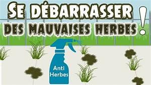 Désherbant Naturel Pour 600m2 : d sherbant naturel pour d truire les mauvaises herbes ~ Nature-et-papiers.com Idées de Décoration